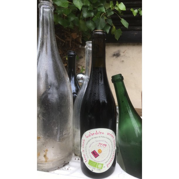2019 GUALANDRINO Rosso Vino da Tavola, Gualandi CHAR KØLAUG